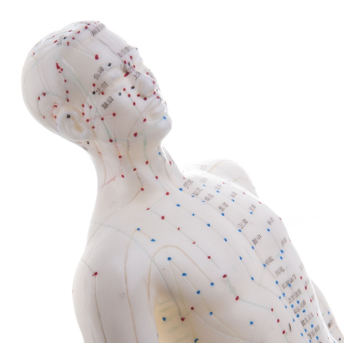 ŠAN Akupunktura Beograd