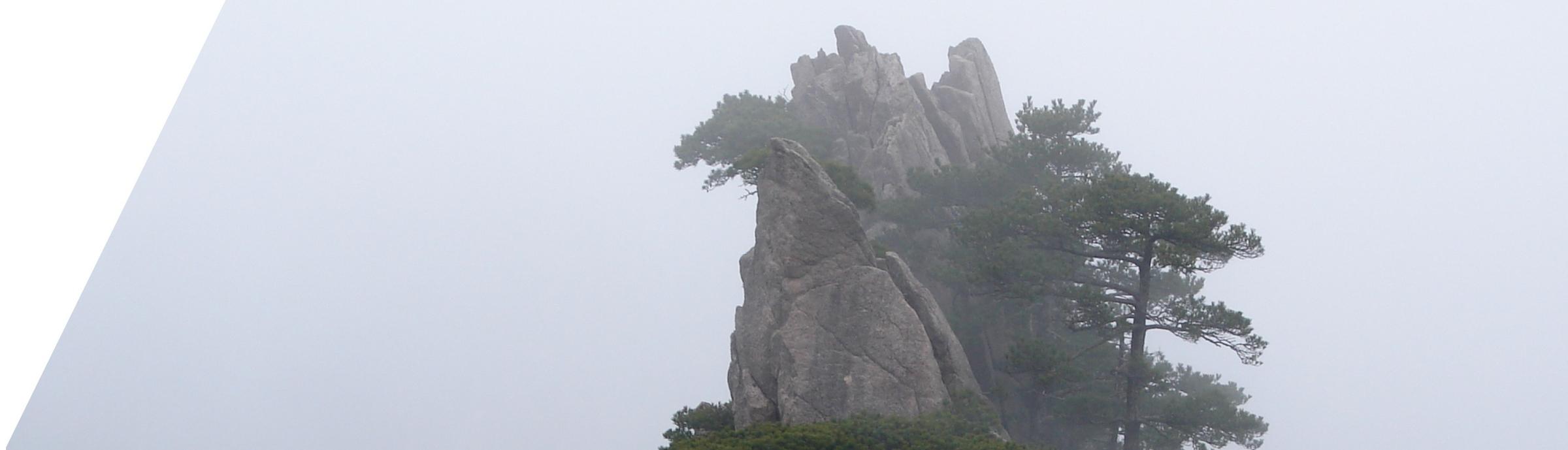 Lekarska ordinacija ŠAN, Akupunktura, Tradicionalna Kineska Medicina